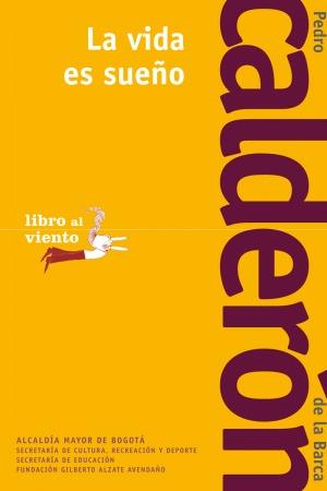 LaVidaEsSueno.png